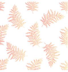 Foliage fuzzy orange vector