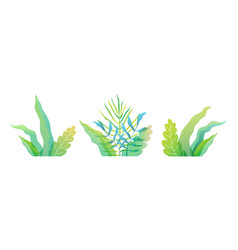 Fresh spring or summer green florals leaves and vector