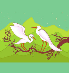 Pair of storks on a branch vector