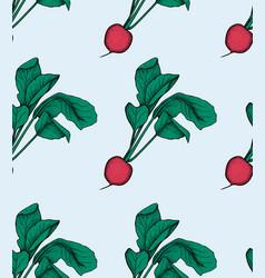 radish pattern radish organic food vector image