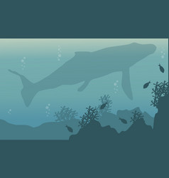 Silhouette landscape underwater whale and fish vector