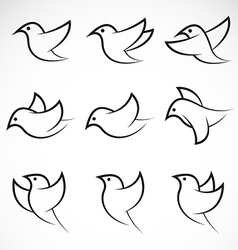Bird Group vector image vector image