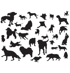 dogs silhouette set vector image