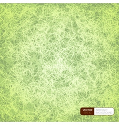 Scrible background vector image