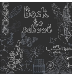 Back to school doodles on a blackboard vector