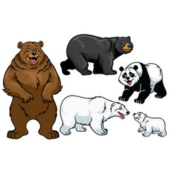 bear set in cartoon style vector image