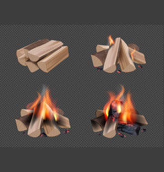 campfire realistic burning flame in wooden camp vector image