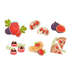 Exotic dishes and desserts with figs vector