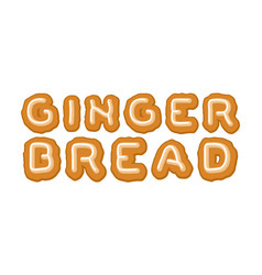 gingerbread typography letters cookies food vector image