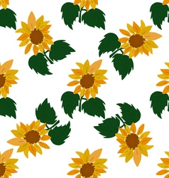 Green leaves and sunflower vector image