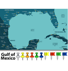 gulf of mexico map vector image