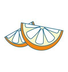 Orange in halves vector