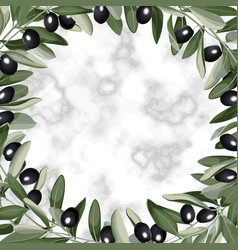 Template frame from olive branches vector