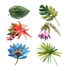 Tropical plants leaves watercolor sketch icons vector image vector image