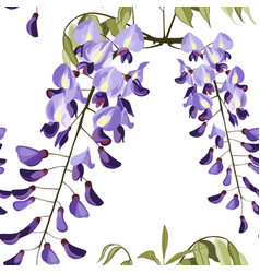 beautiful seamless floral summer wisteria pattern vector image