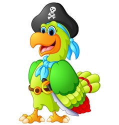 Funny parrot with pirate costum vector