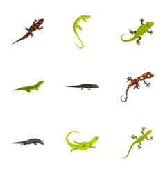 Iguana icons set flat style vector
