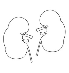 Kidney the black color icon vector
