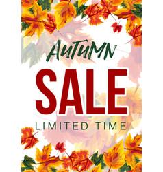 modern design of autumn sale poster vector image