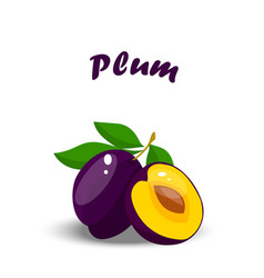 realistic plum whole and slice vector image