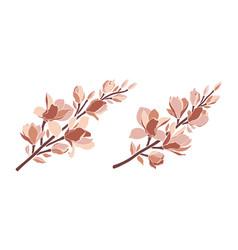 set magnolia branches in pastel color palette vector image