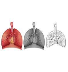 1doodle character for human lungs vector image