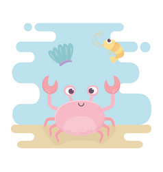 Crab and squid life cartoon under sea vector