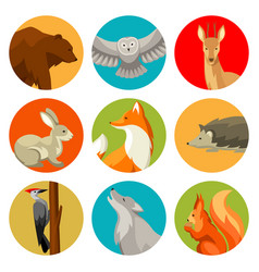 Set of woodland forest animals and birds stylized vector