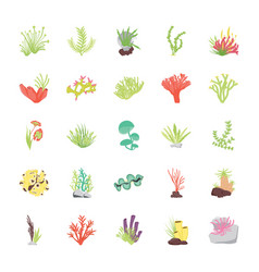 Stony coral reef flat icons vector