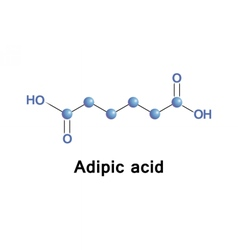 Adipic dicarboxylic acid vector image vector image