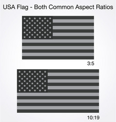 accurate correct grayscale usa flags 2 sizes vector image