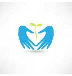 Care plant icon vector image