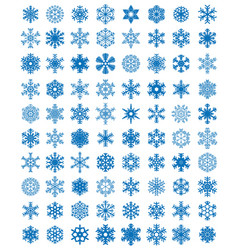 different blue snowflakes vector image