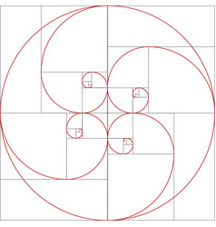 fibonacci spiral golden ratio vector image