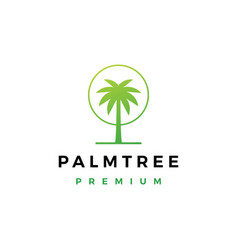 palm tree logo icon vector image