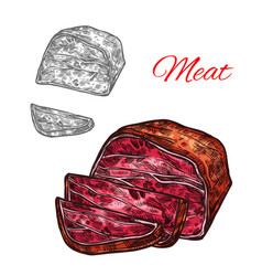sketch beef meat lump farm fresh icon vector image