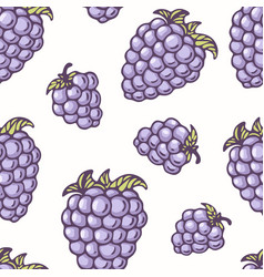 hand drawn seamless pattern with blackberry vector image vector image