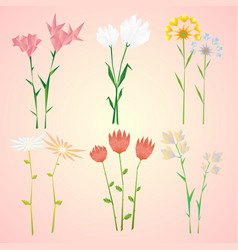 abstract natural spring flowers collection vector image