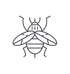 bee line icon concept bee linear vector image