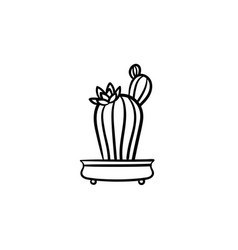 cactus in a pot hand drawn sketch icon vector image