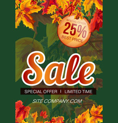 colorful template of sale banner vector image