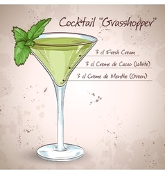Grasshopper alcoholic cocktail vector
