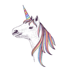 hand drawn head of unicorn vector image