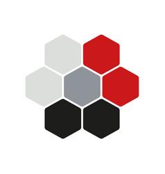 hexogen logo concept flat vector image