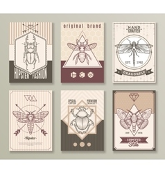 Insects Hipster Cards Set vector