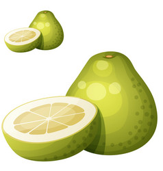 pomelo fruit cartoon icon isolated on vector image