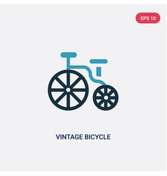 two color vintage bicycle icon from vector image