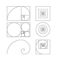 golden ratio template fibonacci vector image vector image