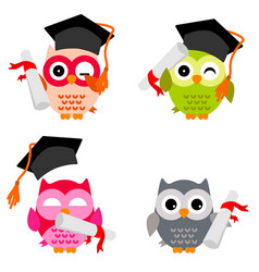 cute owl collection vector image