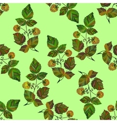 Ector colored raspberry pattern vector